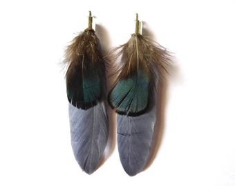 1 pair of exotic feathers around 7 No. 54 cms