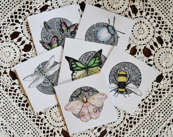 Bug Series Greeting Cards, pack of 6 (blank inside)