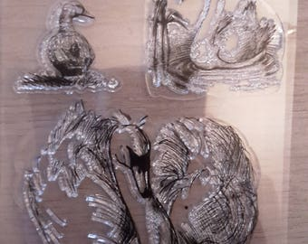 Clear stamps swans