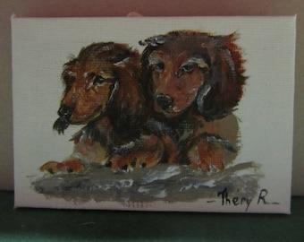 miniature two dachshunds