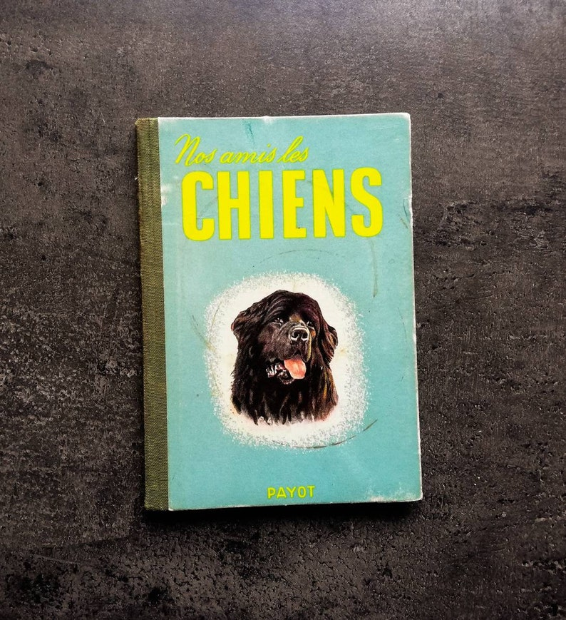 Vintage hardcover book on dogs, full of dog illustrations  French vintage  book
