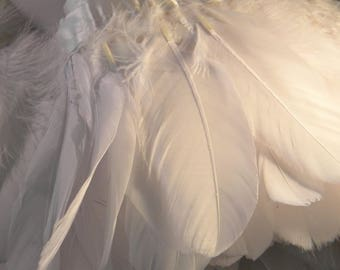 20 natural white goose feathers - 10 cm to 18 cm - mounted on bias-feather - like 48