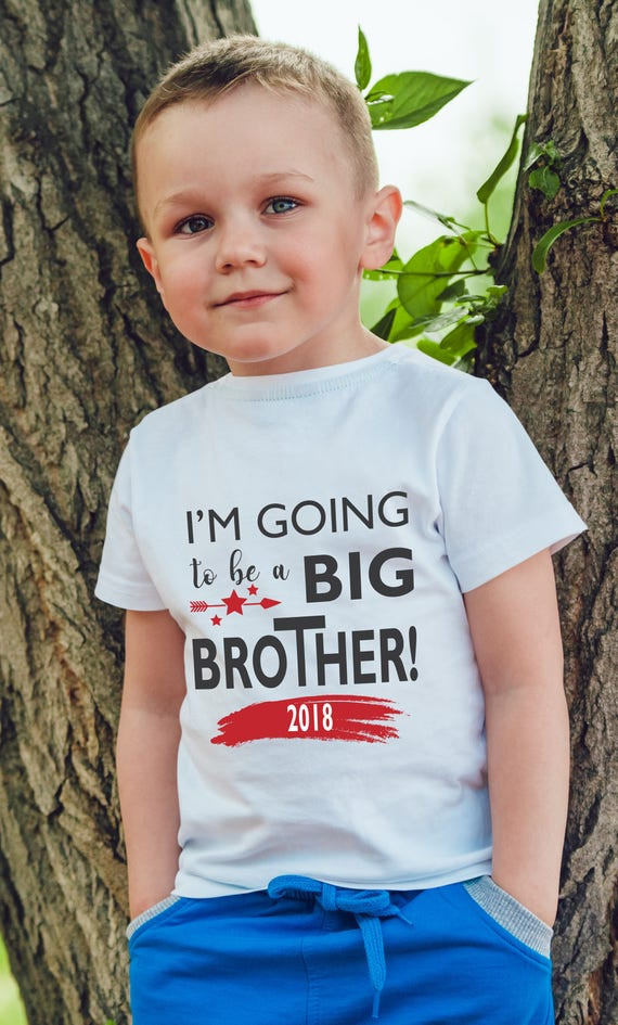 Personalised I/'m the Big Brother Dinosaur T-Shirt Top Tee Childrens Kids Toddler