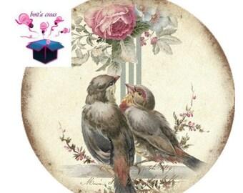1 cabochon clear 30 mm for pendant or grip bag and birds vintage bottle opener