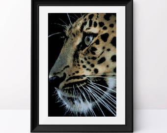 Leopard cross stitch pattern Animal pdf pattern Counted cross stitch design Leopard on black aida Modern cross stitch