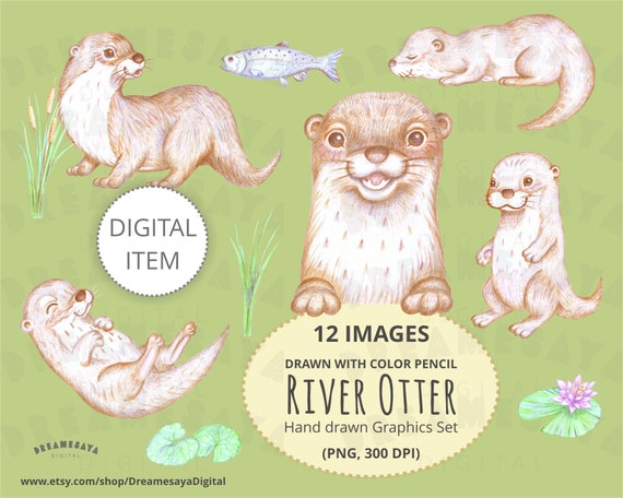 Otter Clip Art Hand Drawn With Color Pencil Cute River Otters Illustration Forest Animal Drawing Clipart For Commercial Use