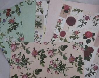 "Assortment of floral papers ""botanique"""