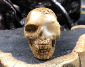 Crystal skull. Skull carved by hand opal boulder. 5cm in length.