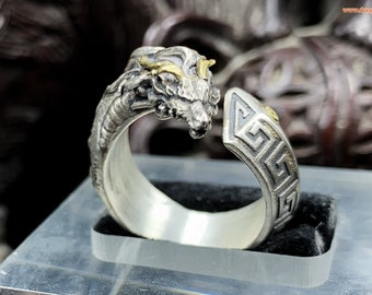 Tian-long dragon ring, the celestial dragon. Feng shui protection. Silver 950, copper, high-quality craft jewellery.