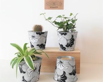 Ananas Hydroponique Plante en Pot vase Fleur Affichage Cadeau D/'Anniversaire Idée Cadeau