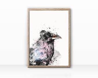 Crow bird illustration, digital download possible
