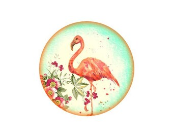 2 cabochons 16 mm glass Flamingo Pink 6-16 mm