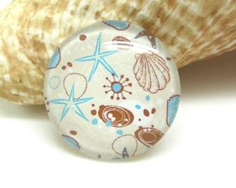 2 cabochons 20 mm glass summer sea shells - 20 mm