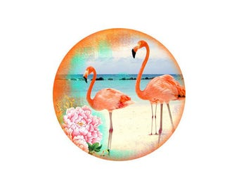 2 cabochons 14 mm glass Flamingo Pink 5-14 mm