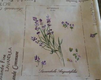 "Floral fabric coupon 50 X 50 cm / ""lavender"" patterns / botanical print / Provence Herbarium"