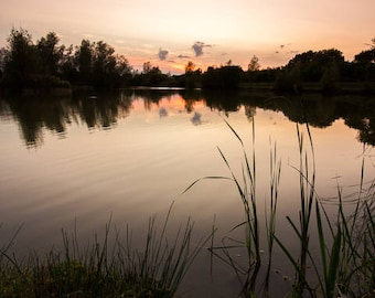 Bocking Sunset