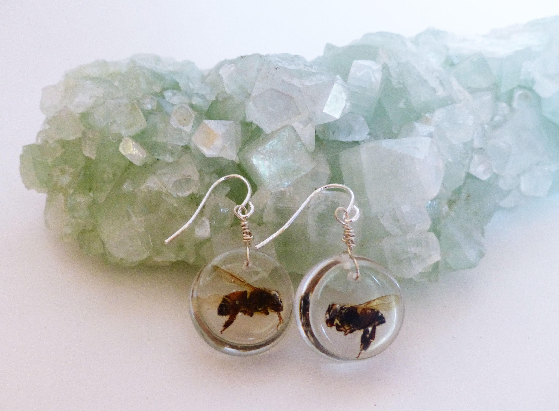 5ed017922af5d Honey bee earrings, honey bee jewelry, real honey bee, beekeeper gift,  insect earrings