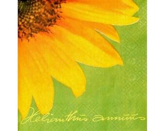 Napkin PLA037 large sunflower green background