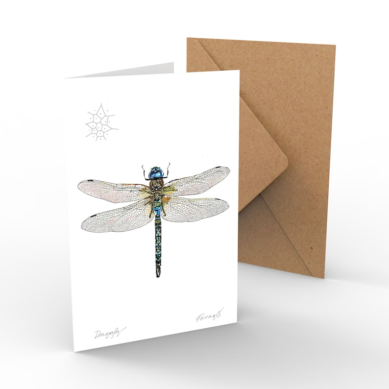 Dragonfly image 0