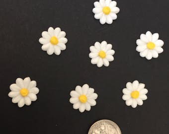 Daisy, royal icing decorations,24 pieces