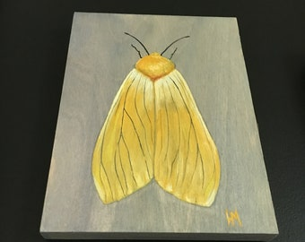 Original Gouache Yellow Moth Painting on Wood Panel, Ready to Hang Naturalist Wall Decor, realistic nature painting, botanical insect art