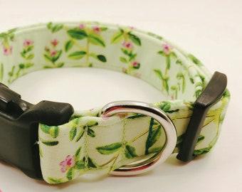 The Garden Thyme Green Dog Collar