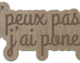 I can't I pony - little words - laser cut wood - brooch