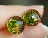 Terrarium studs with moss and gold foil - small 10mm green studs with moss - sterling silver earrings with moss and gold - lightweight earring