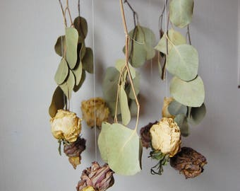 Dried Eucalyptus and Rose Mobile