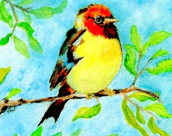 Watercolor - Yellow Song Bird - Note Card 5 x 7 - All Occasion - Individually Customized Matting - Quantity Discounts