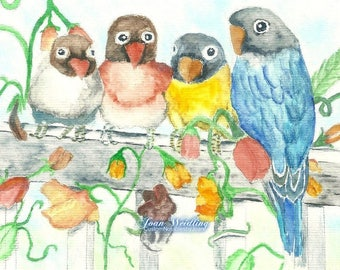 Watercolor - Four Colorful Lovebirds on a Fence - Note Card 5 x 6 1/2 - All Occasion - Individually Customized Matting - Quantity Discounts