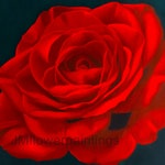 Red Rose Oil Painting Print