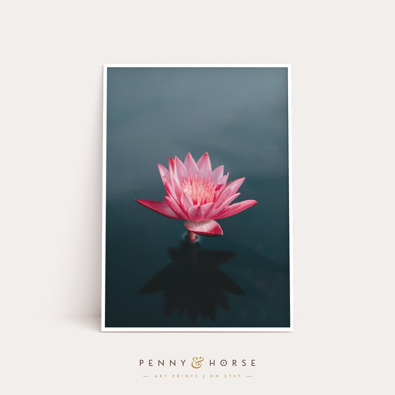 c856db53799e8d Water Lily Print Flower Print Printable Wall Art   Etsy