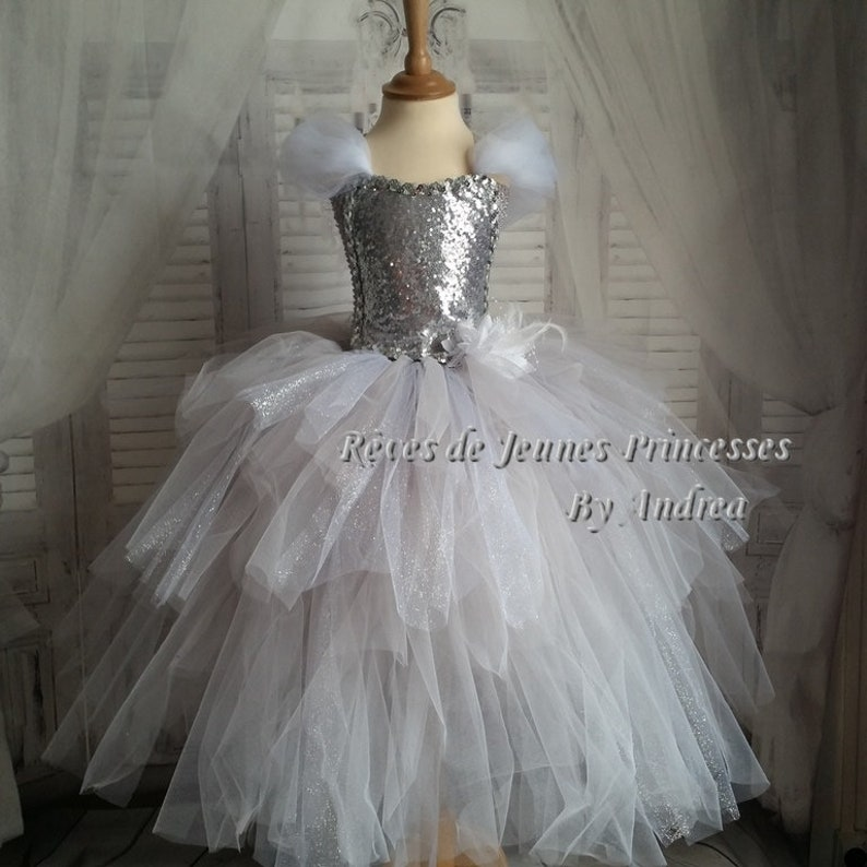 8b35ff625cc Princess Dress Fairy Tales Donkeyskin Tutu Crown Etsy