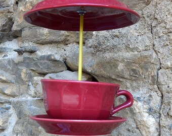 Raspberry bird feeder