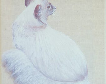 "Painting on linen ""Angora cat"" 20 x 20 cm"