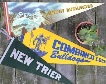 Mount Rushmore / Wisconsin / Illinois Pennant Set - Vintage Americana