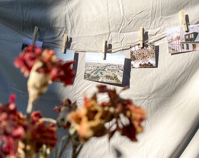 Aesthetic Flower Print, Flower Wall Decor, White Daisies Photo
