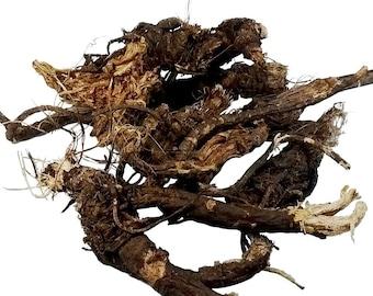 Osha Root (Ligusticum porteri)