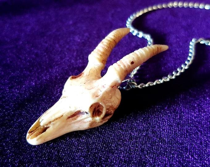 Goat Skull Pendant - Occult Resin Skull Goat gothic necklace