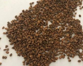 Chinese Cinnamon (Cinnamomum cassia)