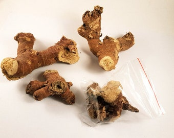 Mandrake Root (Mandragora Officinarum) 20g Bag
