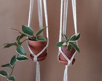 Pair of Mini Plant Hangers