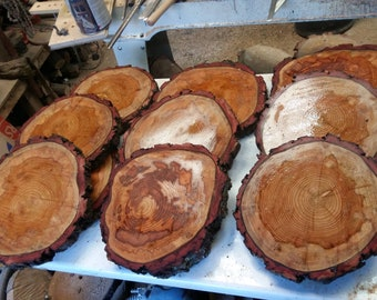 10 solid wood slices sanded between 23-25 cm approx min 2cm depth Ideal table size others available