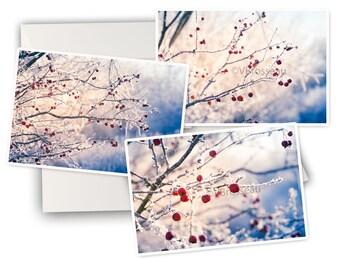 Winter greeting card etsy 3 blank 3 winter greeting cards winter greeting cards m4hsunfo