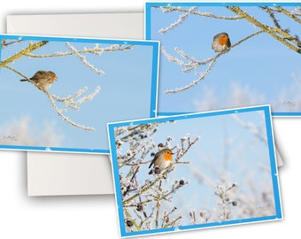 Winter greeting card etsy 3 birds greeting cards winter greetings cards double photos robin three bird robin greeting card m4hsunfo