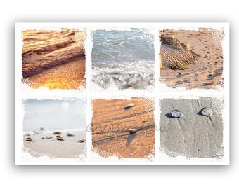 A photograph beach sand - sea - shells made - one beach and sand photography patchwork