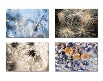 Set of 4 botanical postcards of flower seeds, gardener gift, organic postcards, nature photos,