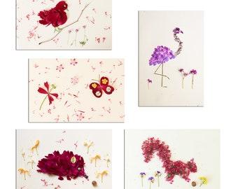 5 small animal photos in petale of fresh flowers, petale flower of the garden, flower seche, botanical arrangement, gift gardener,