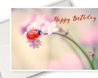 A birthday photo card little Ladybug on pink flower - ladybug birthday card - Ladybug photo greeting card
